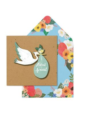 Waterlyn Tache New Arrival Stork Greeting Card
